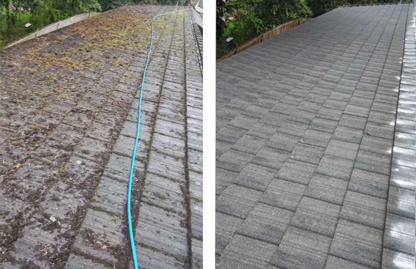 before and after roof cleaning in everett
